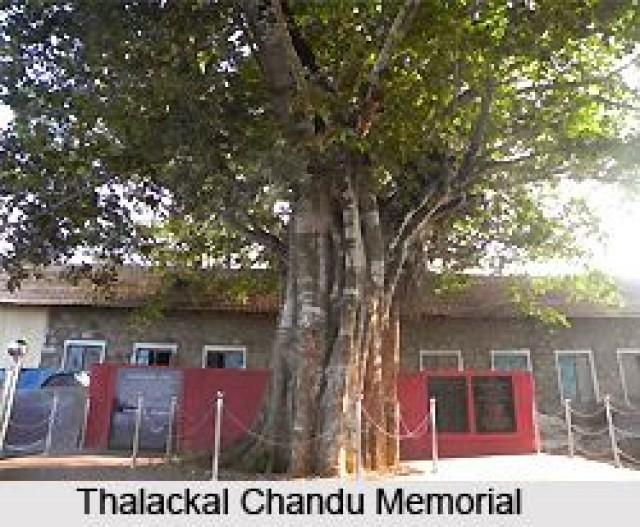 EnMalayalam_Thalakkal chandhu Memmorial hospital-eFm4fBLuhn.jpeg