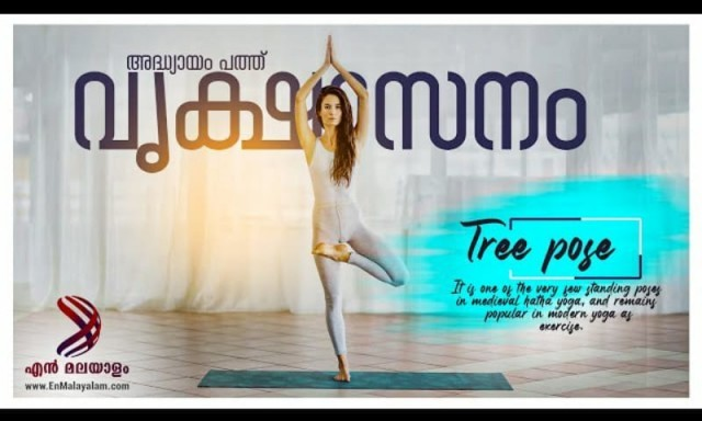 tree pose-frf1tdyOc4.jpeg